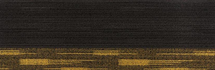 Charcoal Yellow